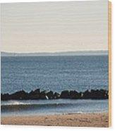 Coney Island Coastline Wood Print