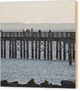 Coney Island Pier Wood Print