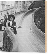 Coney Island: Slide Wood Print