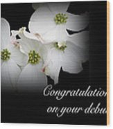 Congratulations On Your Debut - White Dogwood Blossoms Wood Print