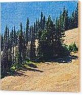 Conifer Clusters Wood Print