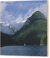Conifer-covered Coastline Of Warm Wood Print by Konrad Wothe