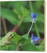 Contemplating Blue Wood Print by Don Youngclaus