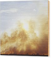 Controlled Burn Masai Mara Game Reserve Wood Print by Jeremy Woodhouse