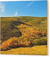 Conway Summit Fall Color Wood Print