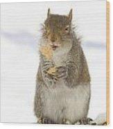 Cookie Squirrel Wood Print