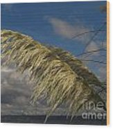 Cool Breeze Wood Print