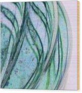 Cool Curves Wood Print