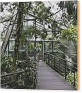 Cool House Inside The National Orchid Garden In Singapore Wood Print