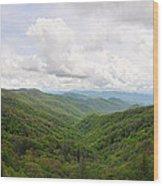 Cool Mountain Mist Wood Print