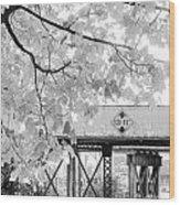 Cooper Street Railroad Trestle Wood Print