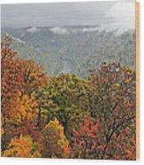 Cooper's Rock West Virginia Wood Print