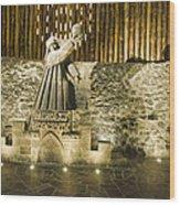 Copernicus - Wieliczka Salt Mine Wood Print