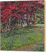 Copper Beeches New Timber Sussex Wood Print