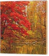 Copper Cove Wood Print