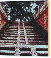 Coral Stairway Wood Print