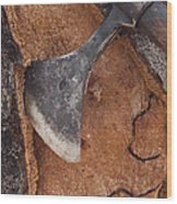 Cork Oak Quercus Suber Bark Wood Print