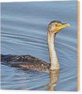 Cormorant Fishing Wood Print