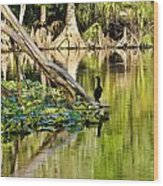 Cormorant On The River Wood Print