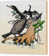 Cormorants On Mangrove Stumps Filtered Wood Print