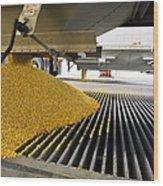 Corn At An Ethanol Processing Plant Wood Print
