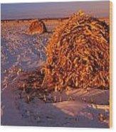 Corn Bales At Sunset, Dugald, Manitoba Wood Print