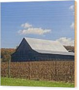 Corn Barn And Silo Wood Print
