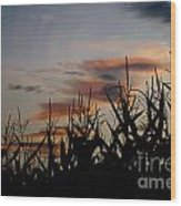 Corn Field With Orange Clouds Wood Print