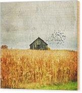 Corn Fields Of Kentucky Wood Print by Darren Fisher