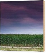 Corn Row Wood Print