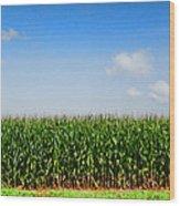 Corn Row Wood Print