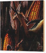 Corn Stalks Wood Print