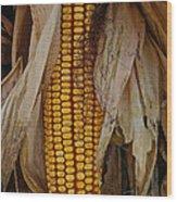 Corn Stalks Wood Print