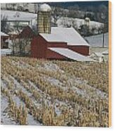 Corn Stubble And Barn In A Wintery Wood Print
