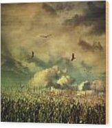 Cornfield In Summer With Dark Skies Wood Print
