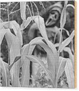 Cornstalks Black And White Wood Print