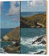 Cornwall North Coast Wood Print by Brian Roscorla