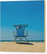 Coronado Beach  Wood Print