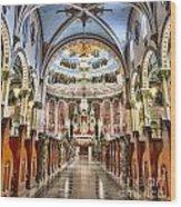 Corpus Christi 01 Wood Print
