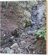 Corte Madera Creek On Mt Tamalpais Wood Print