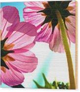 Cosmia Flower Twins Wood Print