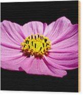 Cosmia Pink Flower Wood Print