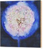 Cosmic Bloom Wood Print by Tara Thelen