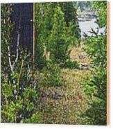 Cottage 999 Wood Print by Cyryn Fyrcyd