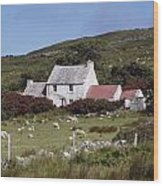 Cottage, Ireland Wood Print