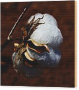Cotton's Inner Light Wood Print