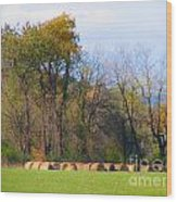 Country Bails Wood Print