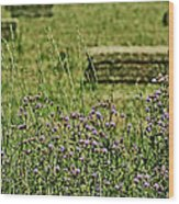 Country Gardens Wood Print