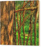 Country Gate Wood Print