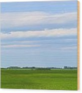 Country Grain Elevator Panoramic Wood Print